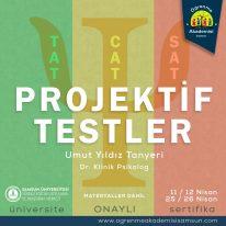 PROJEKTİF TESTLER (TAT-CAT-SAT)